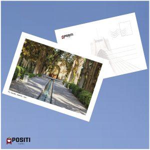 fin garden postcard
