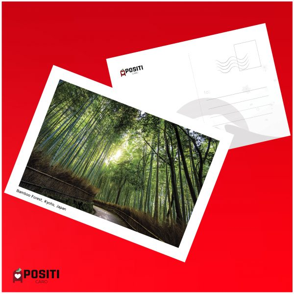 Kyoto Bamboo Forest postcard